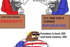 Демократия США