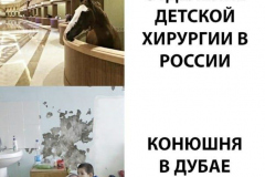 Отделение детской хирургии в России и конюшня в Дубае