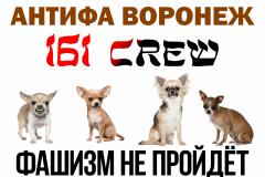 Антифа Воронеж