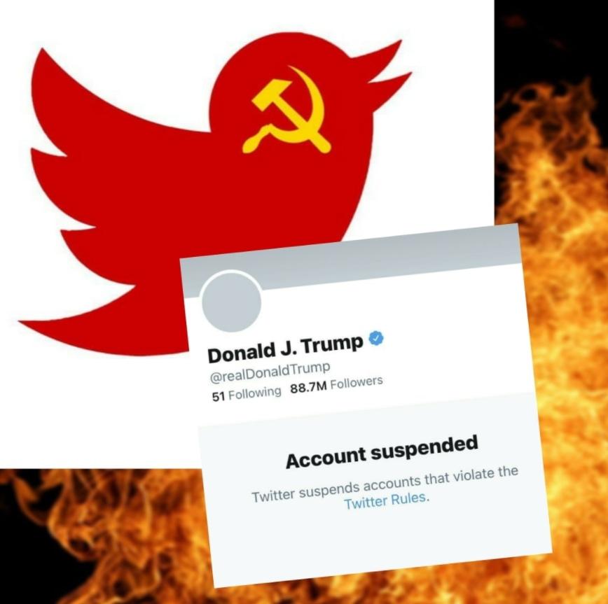 #twitter1984 – появились хештеги против блокировки Трампа