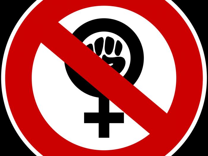 Критика феминизма