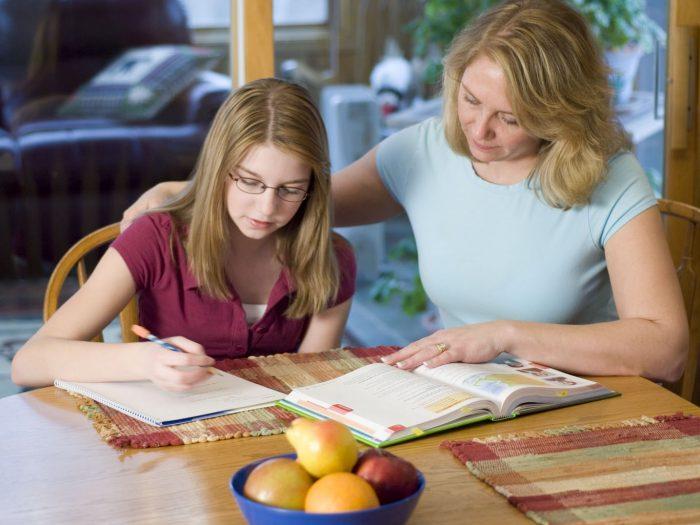 Почему домашнее обучение лучше школьного