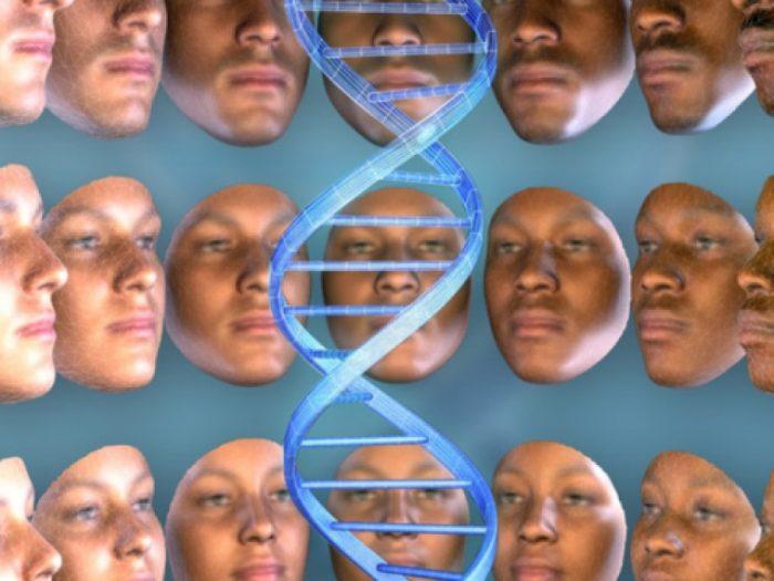Учёными зафиксирован влияющий на строение лица ген