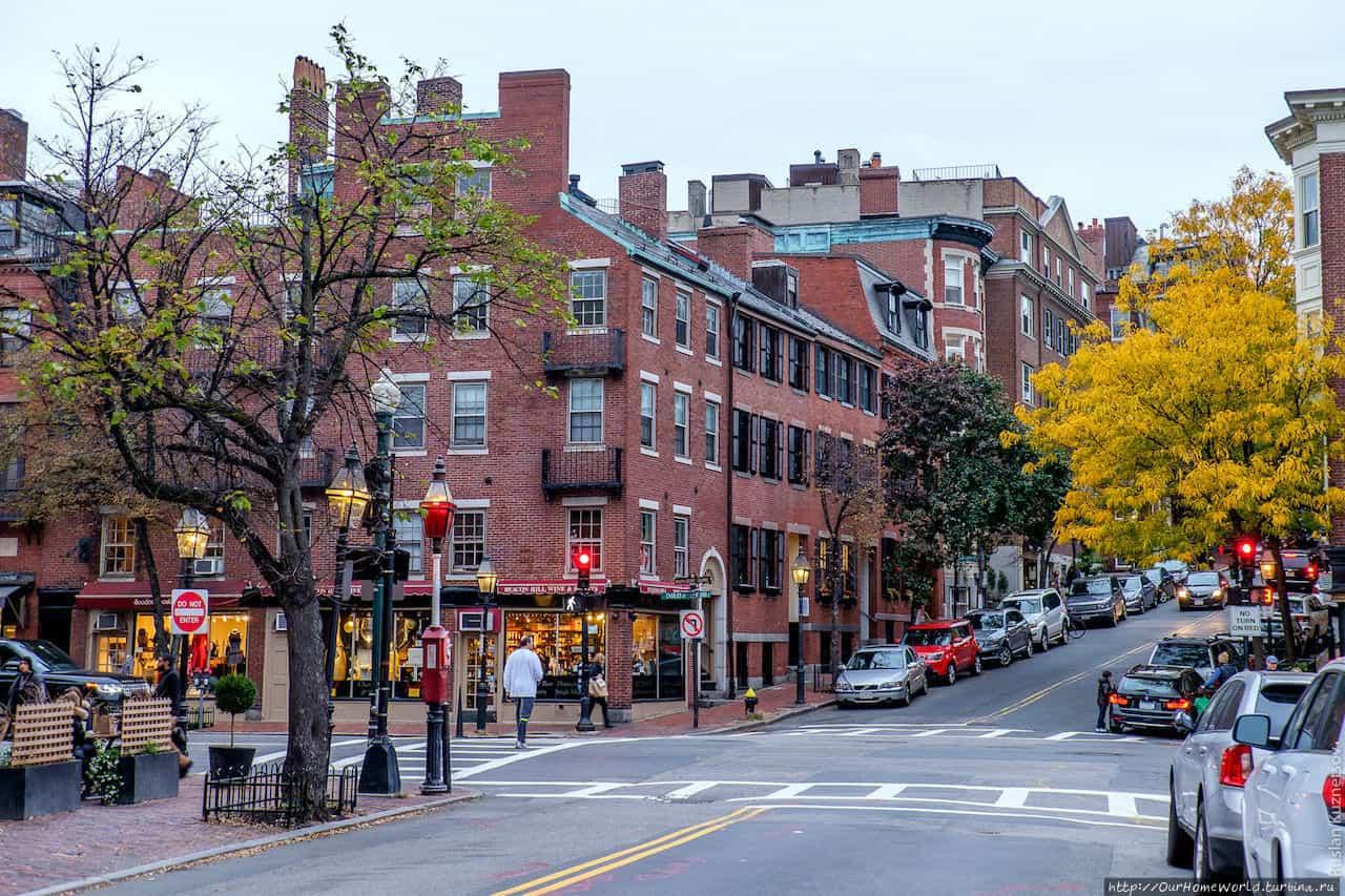 В Бостоне отменили классы для одарённых из-за тупости негров